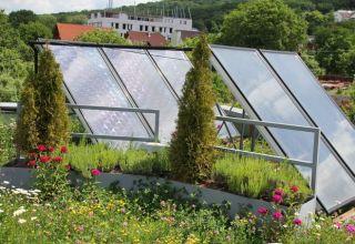 Bioszolár tető
