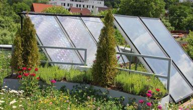 Solar green roof