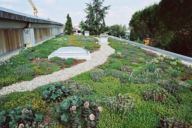 Garden green roof