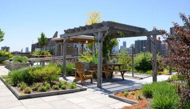 Landscape green roof
