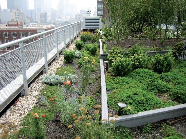 Garden roof