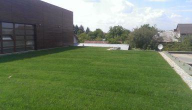 (Română) Grădinița din Chitila, cu acoperiș verde