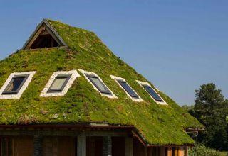 Acoperiș verde extensiv cu pantă de 45 grade