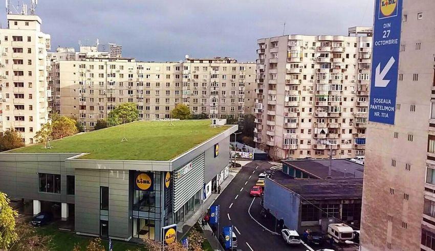 Acoperiș verde extensiv în inima Bucureștiului, la magazinul Lidl Pantelimon