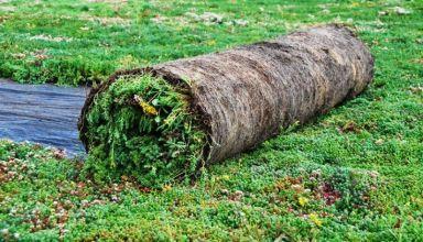 Înverzire instantanee cu rulou de vegetație