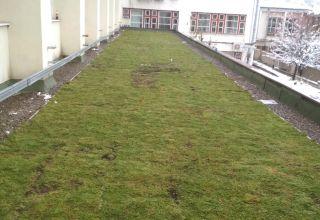 Acoperiș verde pe o sală de sport