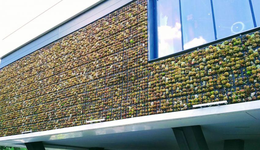 Fațadă verde din plante suculente, la City Park Mall Constanța
