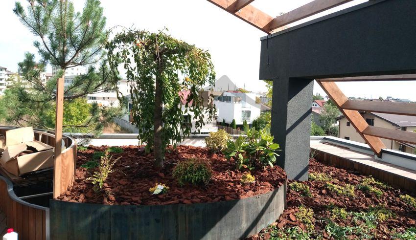 Grădină pe terasa unui penthouse
