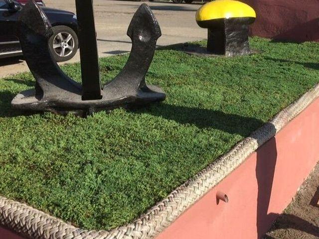 (Română) Terasă verde tip acoperiș verde extensiv - portul Constanța