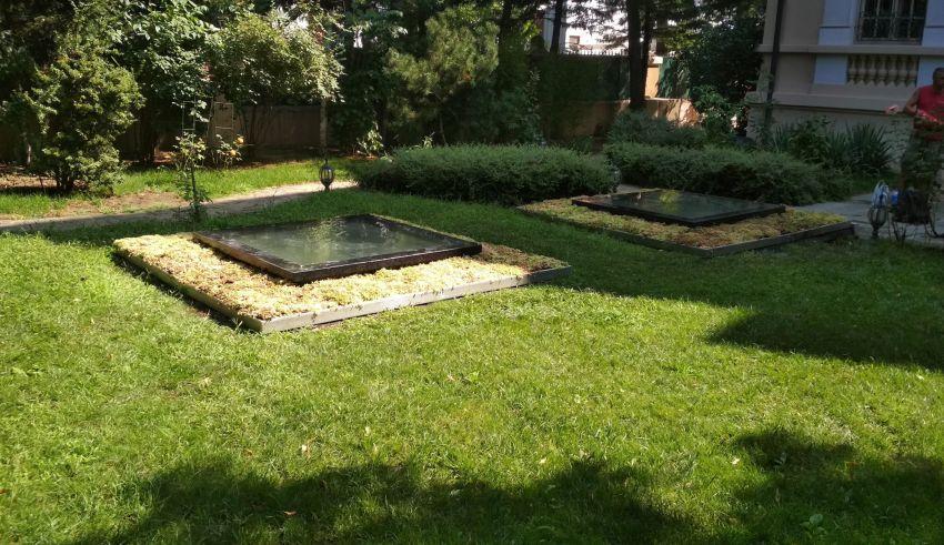Luminatoare cu sedum într-o grădină superbă a unei case din București