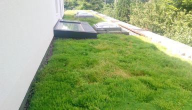 Terasă verde necirculabilă la o casă în Cluj